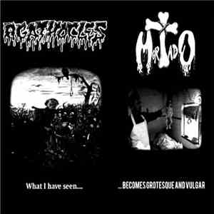 Agathocles / Mortado - What I Have Seen... / ...Becomes Grotesque And Vulga ...