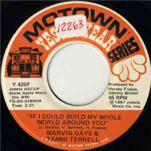 Marvin Gaye & Tammi Terrell - If I Could Build My Whole World Around You /  ...