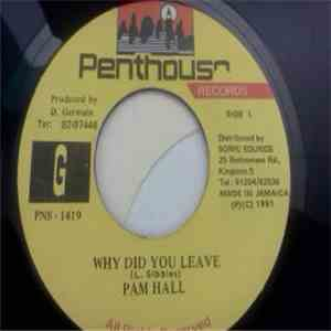 Pam Hall - Why Did You Leave